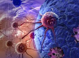 В ближайшие четыре года ученые начнут тестировать универсальное лекарство отрака